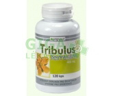 Tribulus terrestris 400mg cps.120