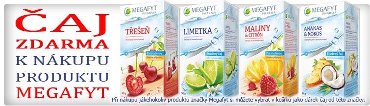 GigaLékárna.cz - Megafyt čaj jako dárek