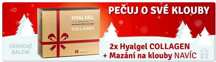 GigaLékárna.cz - Vánoční balení Hyalgel na klouby