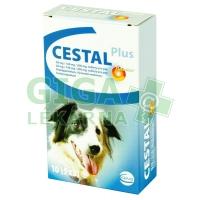 Cestal Plus flavour 10tbl