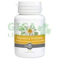 Kopretina řimbaba + vitamín B6 a hořčík tbl.40