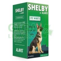 Alavis Shelby Pro imunitu cps. 30