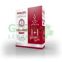 Hyalgel Collagen MAXX vánoční balení 2017 2x500ml