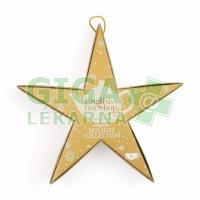 English Tea Shop Bio Zlatá hvězda 6 pyramidek