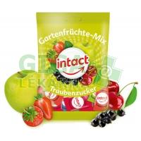 Intact sáček hroznový cukr ZAHRADNÍ MIX 100g