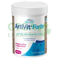 ArtiVit Forte prášek 400g