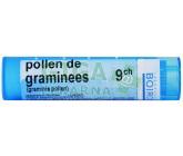 Pollen De Graminees CH9 por.gra.4g