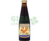 Bio rakytníková šťáva 100% Beutelsbacher 0,33l