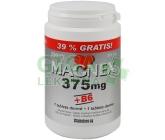 Magnex 375 mg +B6 tbl.250