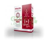 Hyalgel Collagen MAXX vánoční balení 2017 2x500 ml