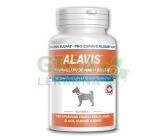 Alavis MSM+Glukosamin sulfát pro psy tbl.60