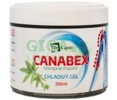 Dr.Cann CANABEX konopné mazání chladivý gel 250ml