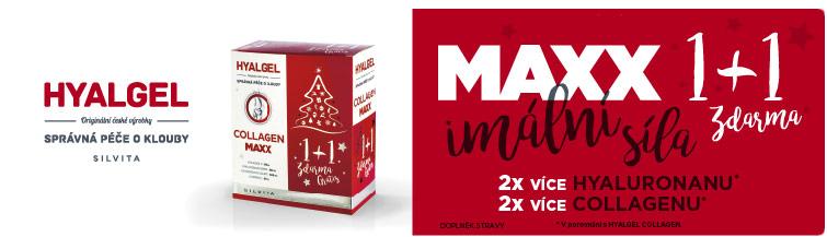 GigaLékárna.cz - Hyalgel Collagen MAXX vánoční balení 2018 2x500 ml