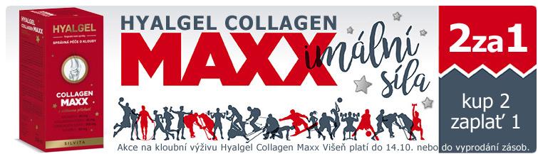 GigaLékárna.cz - Hyalgel Collagen Maxx Višeň 2za1