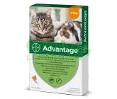 Advantage 40mg spot on pro m.kočky+králíky 4x0.4ml