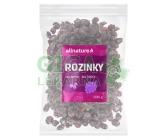 Allnature Rozinky 500g