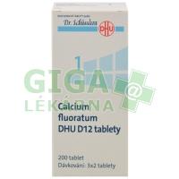 Calcium fluoratum DHU 200 tablet D12 (No.1)