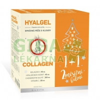 Hyalgel COLLAGEN vánoční 2x500ml