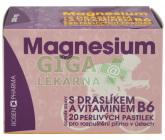 Obrázek Rosen Magnesium 300mg perlivé pastilky 20ks