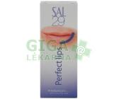 Obrázek SAL 29 Perfect lips 4g