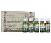 Saloos Sada esenc. olejů Domácí aroma lékárnička
