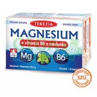 TEREZIA Magnesium+vitamin B6 a meduňka 30 kapslí