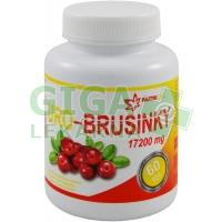 URO - Brusinky 60 tablet